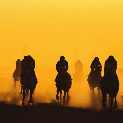 صور: تاريخ سباقات الخيول