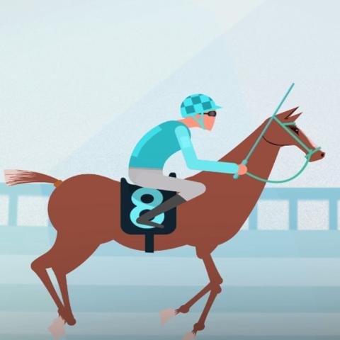صور: جماليات الخيول .. كأس دبي العالمي