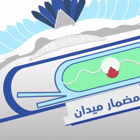 صور: مضمار ميدان .. كأس دبي العالمي