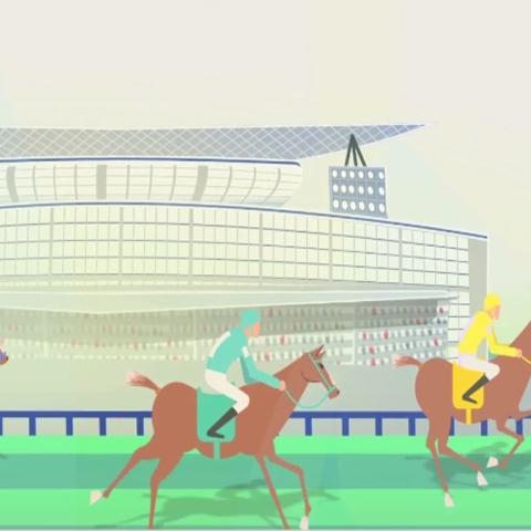 صور: الخيول صفات وسلالات .. كأس دبي العالمي