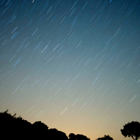 Photo: Dubai Reaches for the Stars