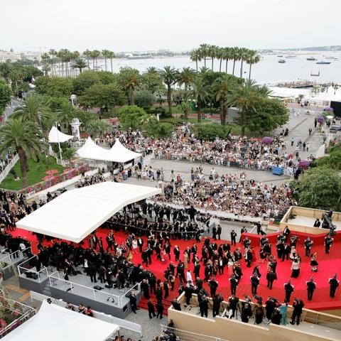 صور: الإمارات تشارك في مهرجان كان