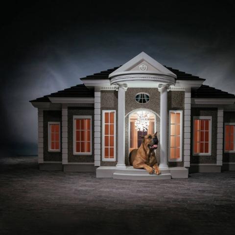 Photo: Luxury Dog Mansions