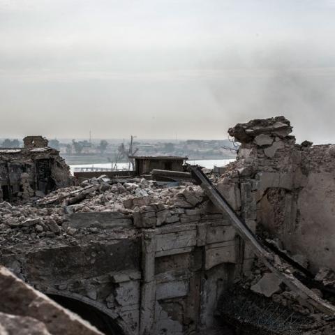 صور: الموصل تعود إلى ربيعها