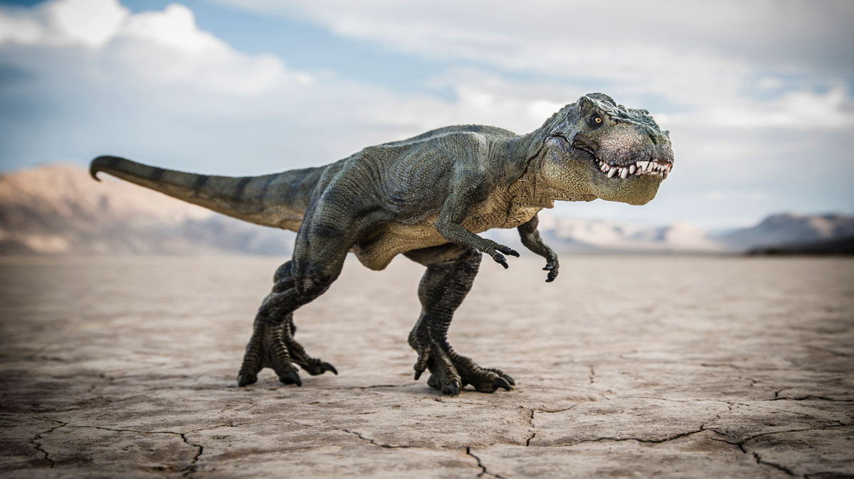 مر من هنا ديناصور