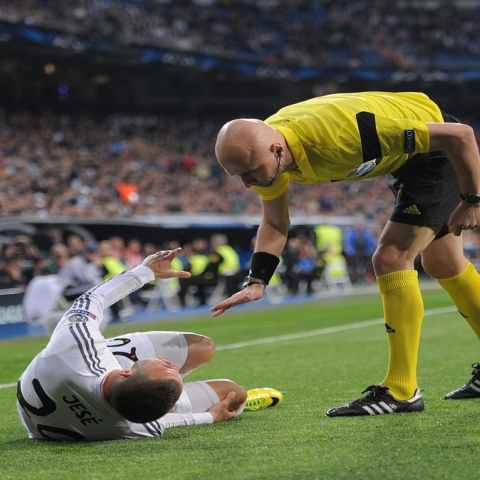 Photo: Stars and Cruciate Ligament