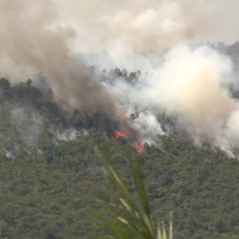 Photo: Global Fire Crisis