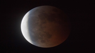 Lunar Eclipse to Occur Tonight