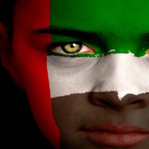 Photo: UAE Flag: Pride And Honor