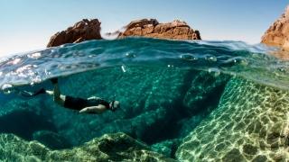 Underwater Paradise In UAE