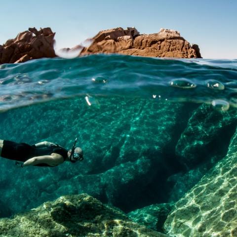 صور: تعرّف على أفضل مواقع الغوص في الإمارات