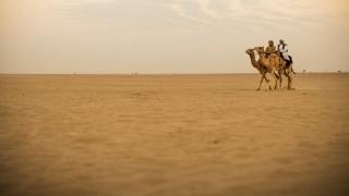 أجمل رحلات الطرق في الإمارات