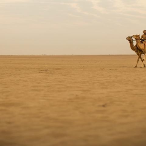 صور: أجمل رحلات الطرق في الإمارات