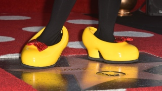 Minnie receives a star on the Walk of Fame