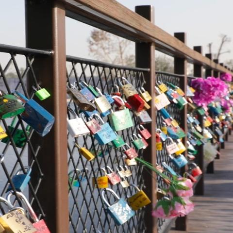 Photo: Bridge of love in Dubai