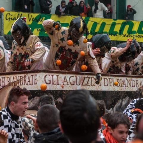 """صور: """"معركة البرتقال"""".. لأجل الحرية"""