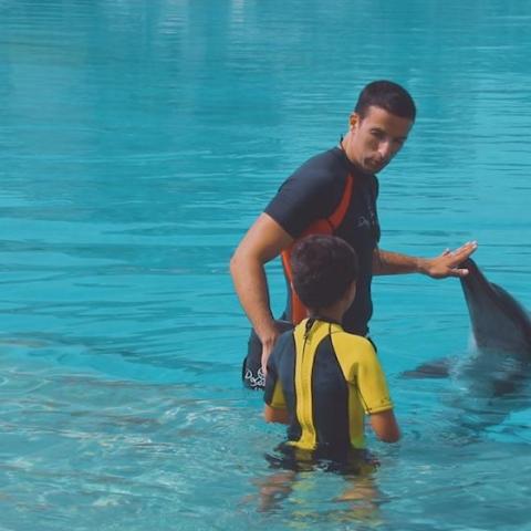 Photo: Fabio Silveria Passion for Dolphins