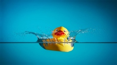 What's inside a rubber duck?