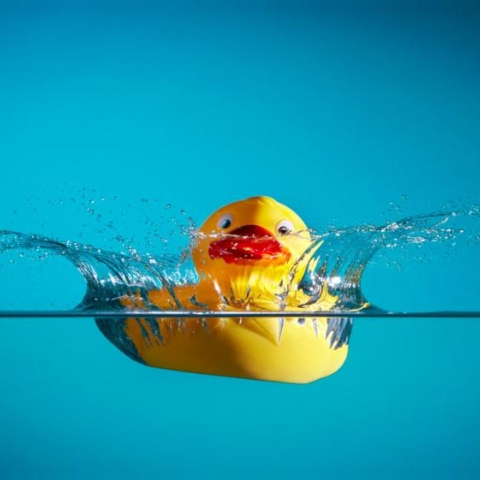 Photo: What's inside a rubber duck?