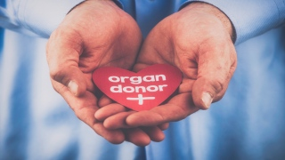Have you thought of donating your organs after death?
