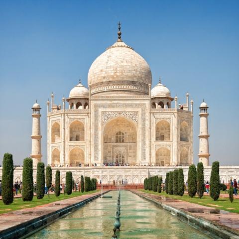 Photo: Will the Taj Mahal Turn Green?