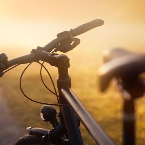 صور: أفضل الأماكن لممارسة رياضة ركوب الدراجات الهوائية في دبي