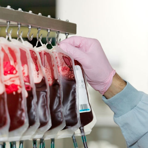 Photo: How can you be a qualified blood donor?