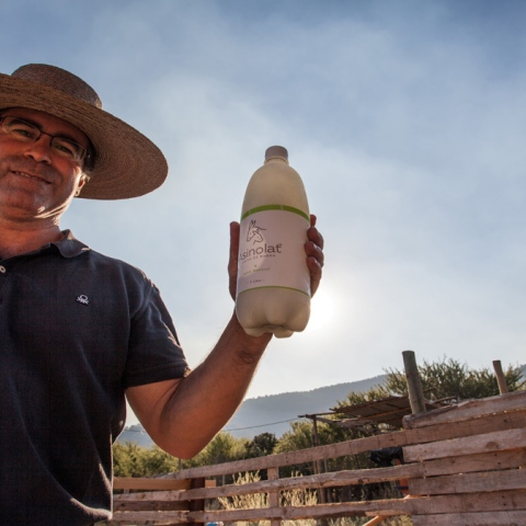 Photo: Would You Drink Donkey's Milk?