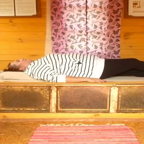 """صور: """"النوم مع النحل"""" علاج يلقى رواجًا متزايدًا في ليتوانيا"""