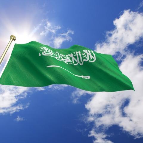 ${rs.image.photo} الإمارات تحتفل بالعيد الوطني السعودي