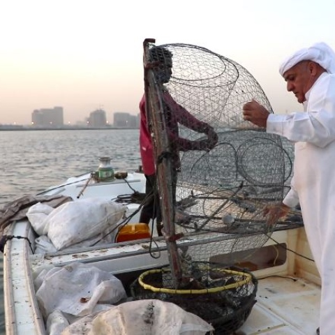 Photo: The sea is my sweet life! - Fisherman Eissa Al Falasi