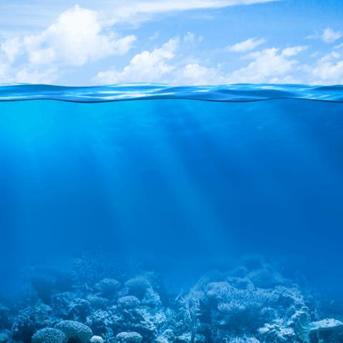 صور: تعرّف ما هو الفرق بين البحار والمحيطات