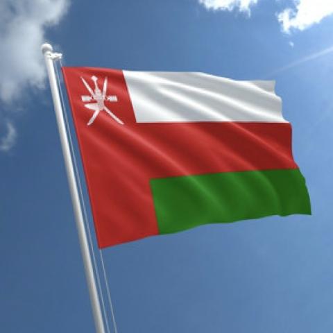 ${rs.image.photo} فعاليّات احتفاليّة في دولة الإمارات بمناسبة اليوم الوطني الـ49 لسلطنة عُمان