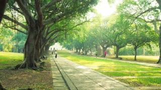 أكبر حديقة في دبي