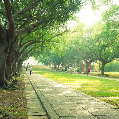 صور: أكبر حديقة في دبي