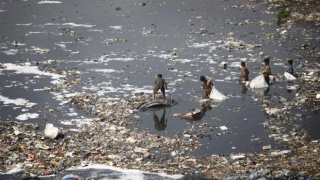 Polluted Environments Kills 1.7m Children a Year