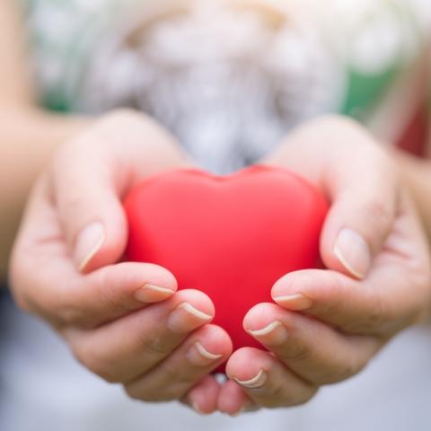 صور: يوم الصحة العالمي: شكراً لأبطال الحياة