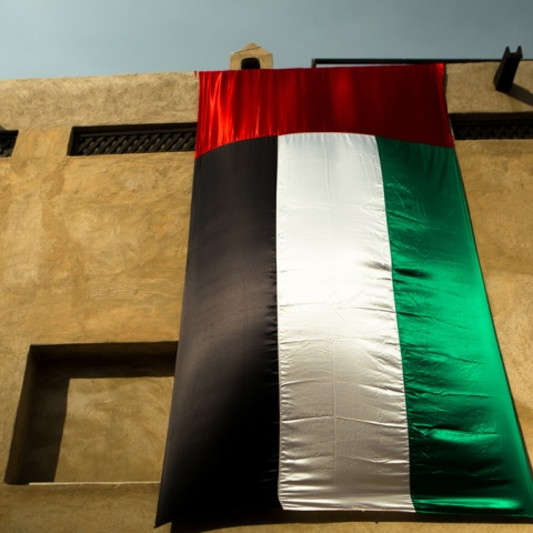 Photo: UAE's 6-Step Humanitarian Agenda