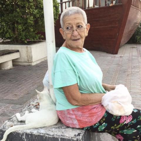${rs.image.photo} مدام هالة تلتقي قططها في دبي بعد شهرين من الحجر المنزلي