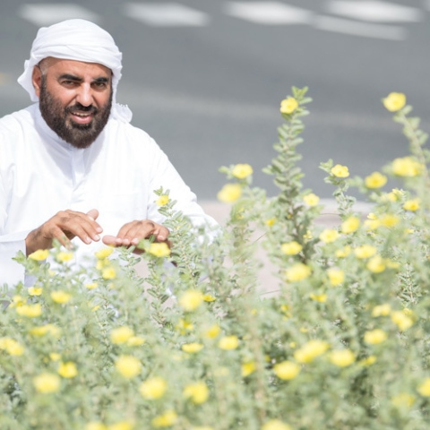 صور: محمد الزعابي: حديقة الاتحاد ثرية بالنباتات المحلية