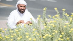 Mohammed Al Zaabi: Local Plant Lover