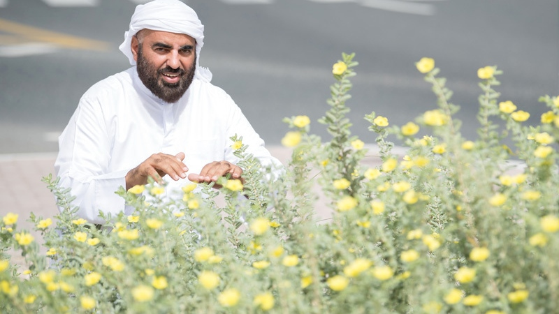Photo: Mohammed Al Zaabi: Local Plant Lover