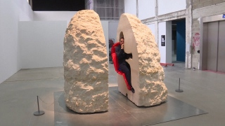 Artist Entombed in a Hollow Rock