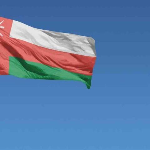 صور: عمان منا و نحن منهم.. الإمارات تهدي المحبة للأشقاء العمانيين بمناسبة اليوم الوطني العماني الـ50