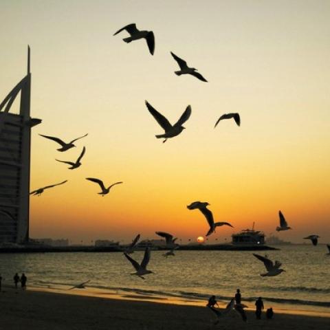 صور: في دبي.. غروب الشمس الأجمل في العالم!