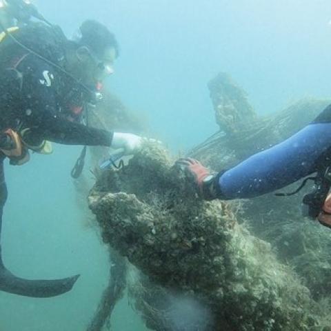 """${rs.image.photo} مبادرة """"شيرة غزل"""" لاستدامة البيئة البحرية والثروة السمكية في الإمارات!"""