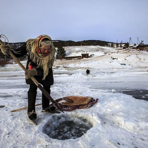 صور: امرأة روسية بعمر الـ79 تقطع مسافات طويلة على الجليد لهدف نبيل.. وهو العناية بالحيوانات!