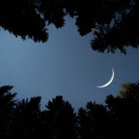 ${rs.image.photo} دبي بوست في رمضان 2021