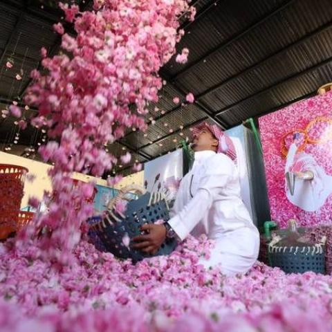 """صور: موطن الورد الفواح """"الطائف"""" تزدهر في شهر رمضان"""