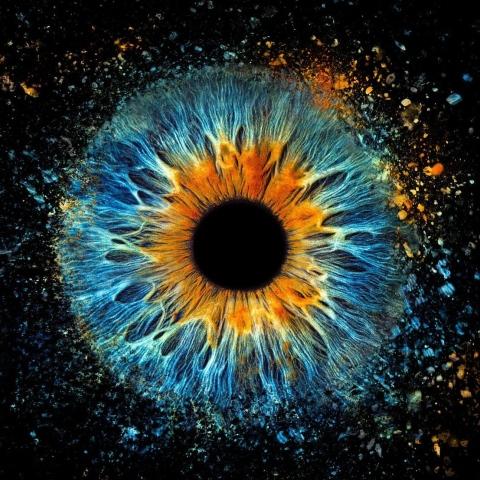 صور: ستوديو Eyemazy بدبي.. مقصد مستكشفي أسرار جمال العيون